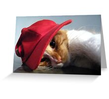 Cute Cat Wearing Red Cap Greeting Card
