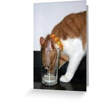Funny Cat Drinking from Glass Greeting Card