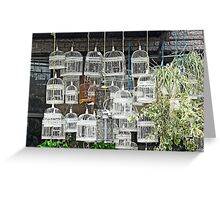 Bird Cages  Greeting Card