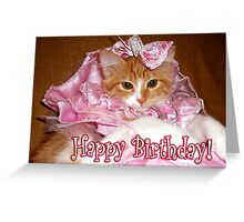 Happy Birthday Pretty Princess Kitten Greeting Card