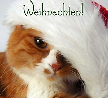 Fröhliche Weihnachten - Christmas Cat in Santa Hat by MoMoCards