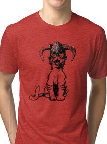 Dragonborn Kitty Tri-blend T-Shirt
