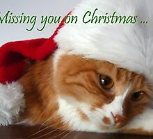 Missing You on Christmas - Cat in Santa Hat by MoMoCards