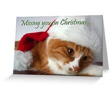 Missing You on Christmas - Cat in Santa Hat Greeting Card