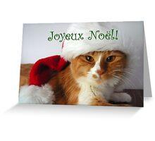 Joyeux Noël - Christmas Cat Wearing Santa Hat Greeting Card