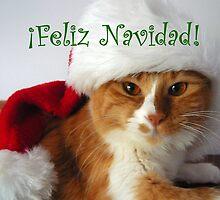 Feliz Navidad - Christmas Cat Wearing Santa Hat by MoMoCards
