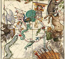 Centaurus, Indus, Chamaeleon, Eridanus, Lupulus, Api, Grus, Phoenix And Other Constellations by VintageLevel