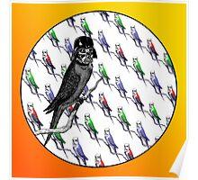 Star Birds Poster