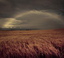 Rainbow's End by DianeRocks
