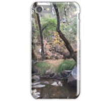 Lost in a Wonderland iPhone Case/Skin