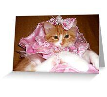 Pretty Princess Kitten Greeting Card