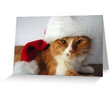 Christmas Cat Wearing Santa Hat Greeting Card