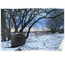 Hay bale in the snow Poster