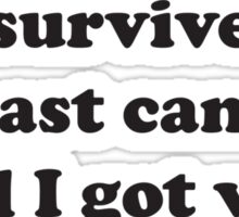 I Survived Breast Cancer and all I got were these new boobs  Sticker