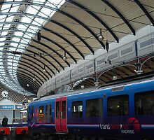 Newcastle Central Station: Spinal Ceiling by justbmac