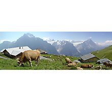 Quintessentially Swiss Photographic Print