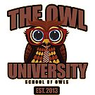 The Owl University by Adamzworld