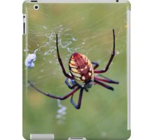Scary Spider iPad Case/Skin
