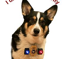Yogi the Guard Dog by William C. Gladish