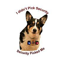 Yogi the Guard Dog Photographic Print
