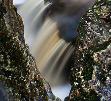 Window, Snug Falls, Tasmania by Jim Lovell