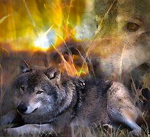 Wolves by Ljartdesigns
