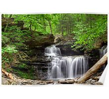 Emerald Trees Surround R. B. Ricketts Falls Poster