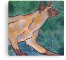 Ming the Siamese Cat, with Ferns Canvas Print