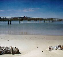 Washed up at Urunga by Clare Colins