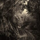 Steam and rainforest by Mel Brackstone