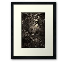 Steam and rainforest Framed Print