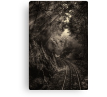 Steam and rainforest Canvas Print