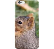 California Grey Squirrel iPhone Case/Skin