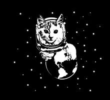Space Cat by KAMonkey