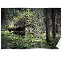 30.8.2013: Abandoned Sauna in the Forest Poster