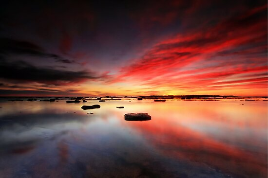 Long Reef Reflections by Arfan Habib