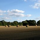 Round Straw Bales by KatDoodling