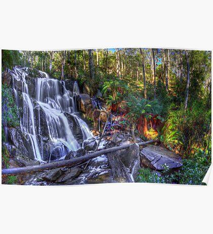 Toorongo Falls Poster