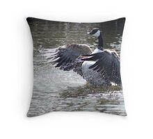 Canada Goose Splashing in Water Throw Pillow