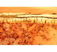Desert Haze Photographic Print