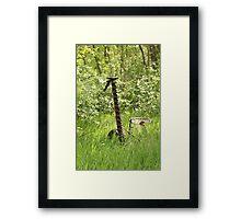 Antique Grass Cutter in a Field Framed Print