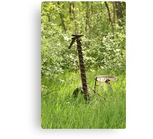 Antique Grass Cutter in a Field Canvas Print