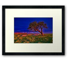 """""""The Forgotten Tree"""" Framed Print"""