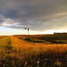 Prairie Dusk by Rachel Sonnenschein
