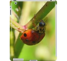 Lady Bug (iPad Case) iPad Case/Skin