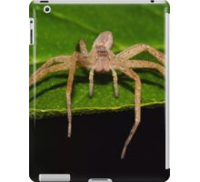 Nursery Web Spider (iPad Case) iPad Case/Skin