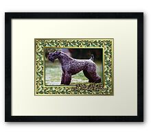 Kerry Blue Terrier Dog Christmas Framed Print