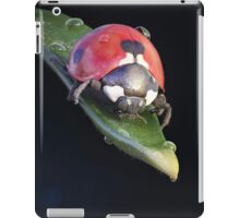 Ladybug Journey iPad Case/Skin