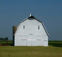 Country Barn by WildestArt