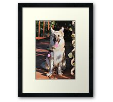 Happy Pup Framed Print